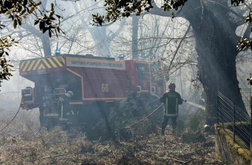法国科西嘉岛发生严重火灾 烧毁1500公顷森林