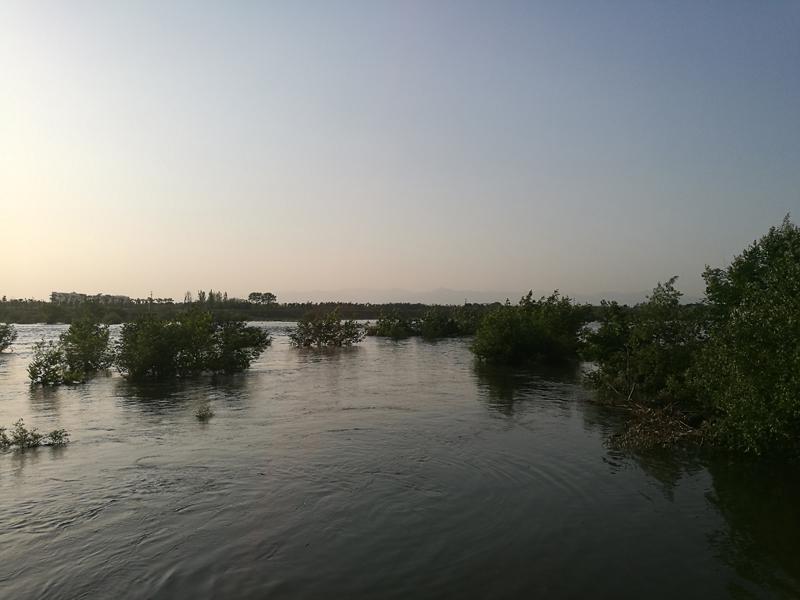 4月10日下午4时左右,衢州乌溪江流域河水暴涨。.jpg